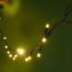 Rental - Fairy Lights Warm white